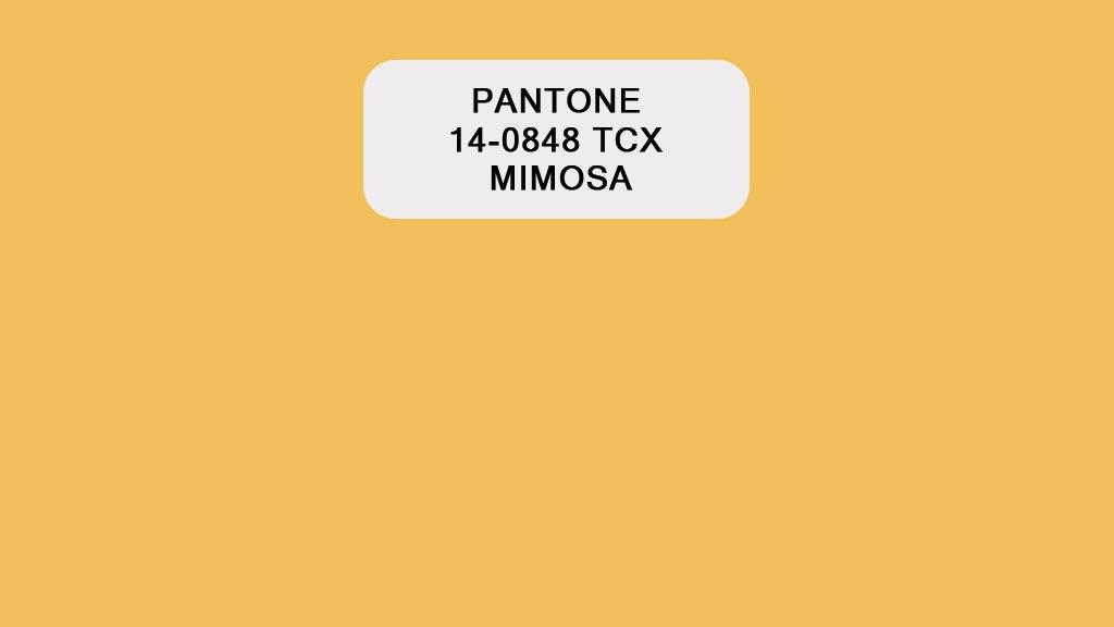 Pantone Mimosa